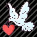 love bird, love dove, love messenger, valentine bird, wedding bird, wedding dove icon