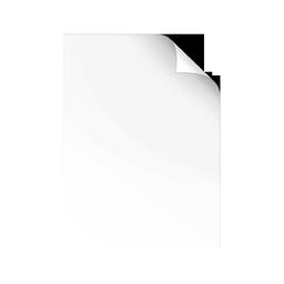 fichier icon