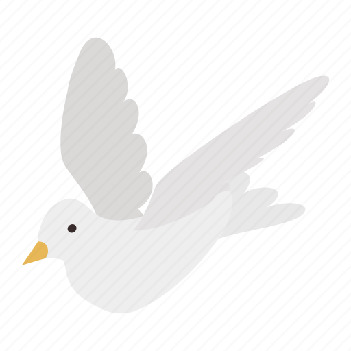 bird, dove, freedom, isometric, pigeon, white, wing icon