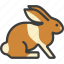 bunny, hare, rabbit icon
