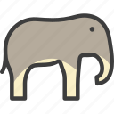 african, animal, elephant, mammoth