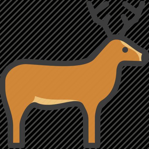 Deer, elk, reindeer, stag icon - Download on Iconfinder