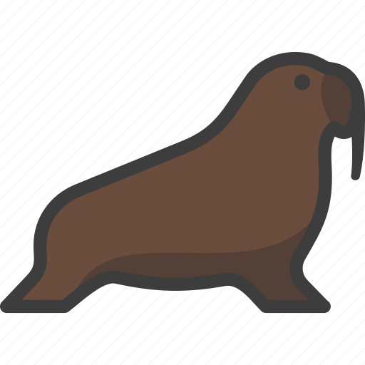 Animal, mammal, marine, pinniped, walrus icon - Download on Iconfinder