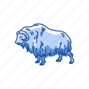 animal, mammal, musk ox, muskox, ovis, sheep, sheep-ox icon
