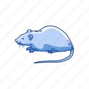 animal, brown rat, lab rat, mammal, mouse, rat, rodent icon
