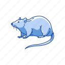 animals, brown rat, cotton mouse, mammal, mouse, rat, rodent icon