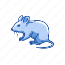 animal, barn mouse, mammal, mouse, pet, rodent icon