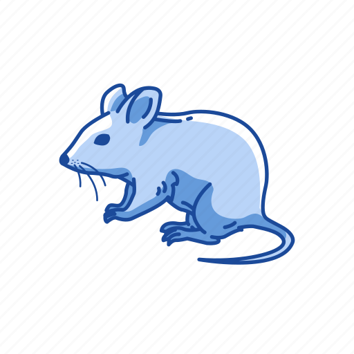 Animal, barn mouse, mammal, mouse, pet, rodent icon - Download on Iconfinder