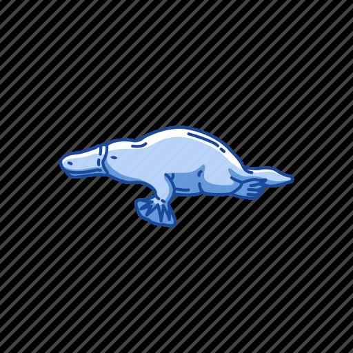 animal, aquatic mammal, billed platypus, duckbill, mammal, platypus icon