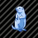 animal, dog mouse, mammal, mouse, prairie dog, squirrel icon