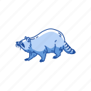 animal, coon, mammal, pest, raccoon, racoon icon