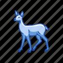 animal, cheetal, chital, deer, doe, mammal icon