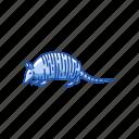 animal, armadillo, little armoured one, mammal, turtle-rabbit