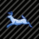 animals, doe, elk, female deer, mammal, musk deer icon