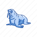 animals, keystone species, mammal, marine animal, tusks, walrus icon