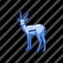 animal, antelope, gazelle, hart mountain antelope, invertebrate, mammal icon