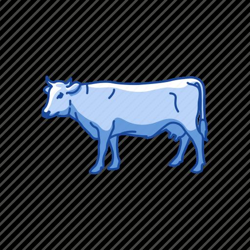 animals, cattle, cow, dairy animals, mammal, taurine cattle icon