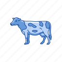 animals, cattle, cow, dairy animals, domestic animal, mammal icon