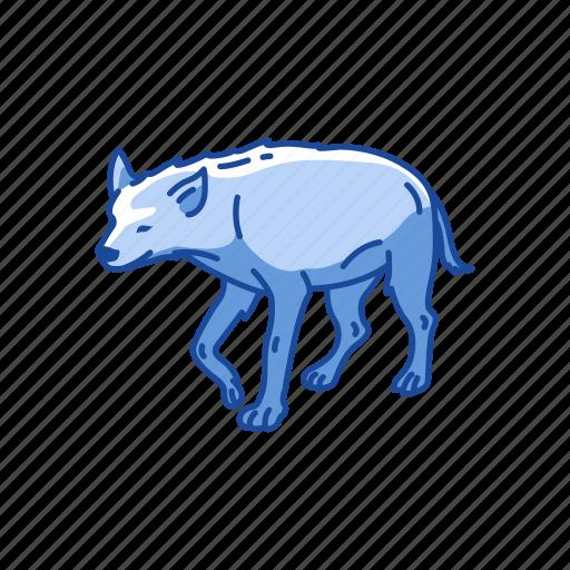 aardwolf, animals, hyena, hyenas, mammal, scavenger icon