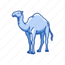 animal, arabian camel, camel, domestic animal, dromedary, mammal icon