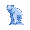 animal, bear, brown bear, kodiak bear, kodiak brown bear, mammal icon