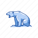 animal, bear, grizzly, mammal, white bear, wild bear icon