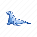 animal, aquatic animal, flippers, mammal, sea lion, seal