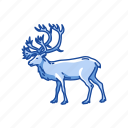 reindeer, caribou, deer, antler, mammal, animal icon