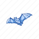 animal, bat, flight animal, flying fox, mammal, webbed wings