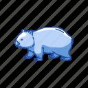 animals, herbivores, mammal, pouch mammal, rodent, wombat