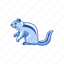 animal, chipmunk, mammal, rodent, squirrel, striped rodent icon
