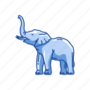 animal, elephant, elephant tusk, large mammal, mammal, marsupial icon