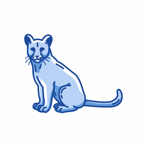 animal, cougar, feline, mammal, mountain lion, panther, puma icon
