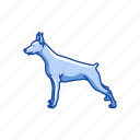 animal, canine, dobermann, dog, guard dog, labrador, mammal icon