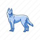 animal, canine, dog, husky, mammal, pet, siberian husky icon