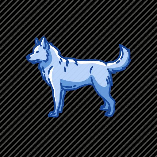 animal, canine, dog, husky, mammal, pet, siberian husky icon