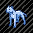 american pit bull, animals, dog, mammal, pet, pitbull icon