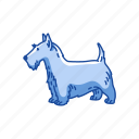 animals, bull terrier, dog, hefty dog, mammal, pet, terrier icon