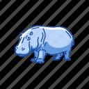 animals, herbivorous, hippo, hippopotami, hippopotamus, mammal