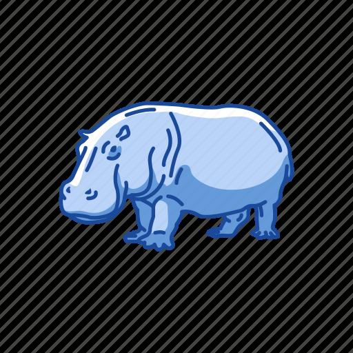 animals, herbivorous, hippo, hippopotami, hippopotamus, mammal icon