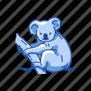 animals, koala, koala bear, mammal, marsupial, wombat icon