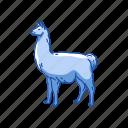 alpaca, animals, cria, lama glama, llama, mammal