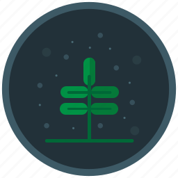 development, exspansion, growth, plant, progress icon