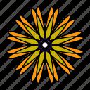 color, flower, hindu, mandala, orient, yoga, zen icon