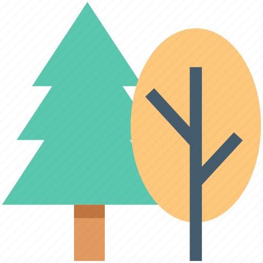 cypress tree, fir tree, jungle, trees, two trees icon