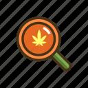 magnifier, marijuana, research