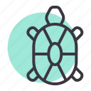 marine, sea, tortoise, turtle icon