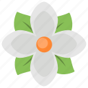 flower, herbal, nature, soft, spring icon