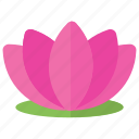 lotus flower, lotus logo, purple lotus, spa flower, water lily icon