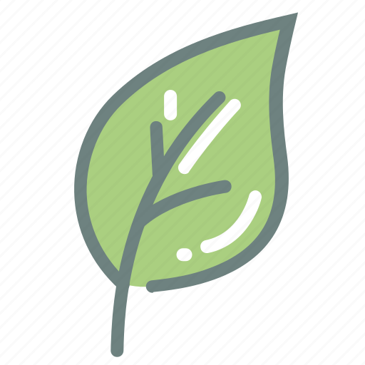 green tea, harvest, herb, leaf, leaves, matcha, tea icon